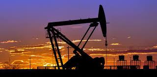 NEUQUÉN¿Debería promover otras industrias o mantener el foco en el petróleo?