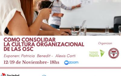 Como consolidar la cultura organizacional de las Osc – Módulos 1 y 2